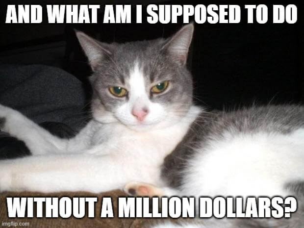 invest-1-million-dollars-for-guaranteed-income-impatient-cat-meme